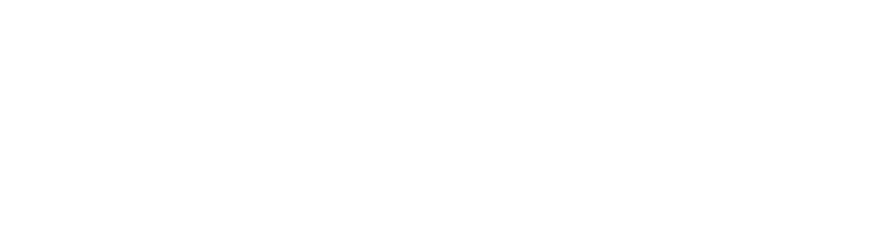 Blog Ase System